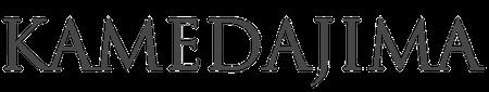 亀田縞 – 江戸ストライプ